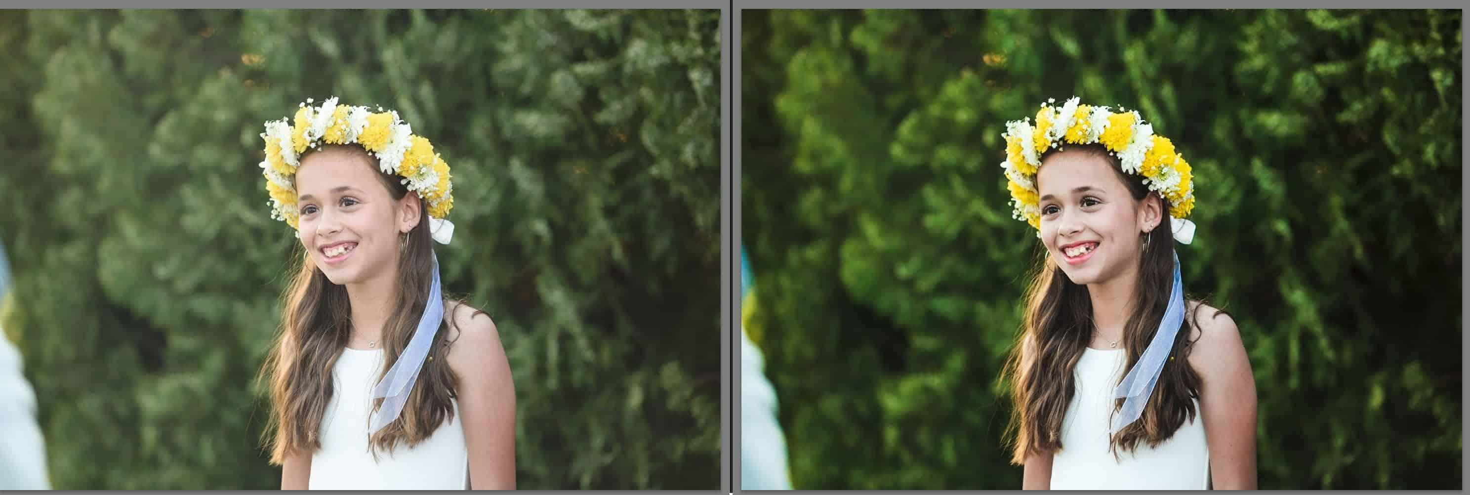 תמונה לפני ואחרי עיבוד